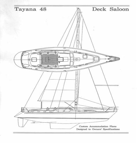 Tayana Line Drawing 1