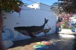 whale-park