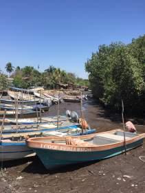 Pangas at low tide