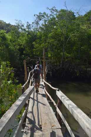 Curu bridge