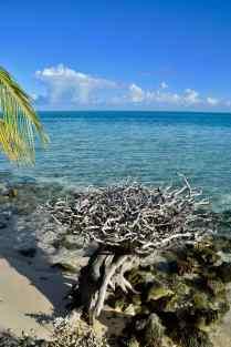 Toau lagoon
