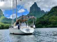 Gaddy in Moorea